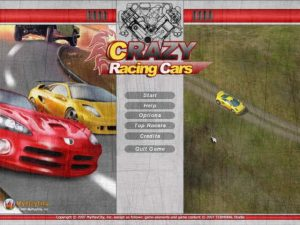 Crazy Racing Cars