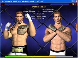 World of Mixed Martial Arts